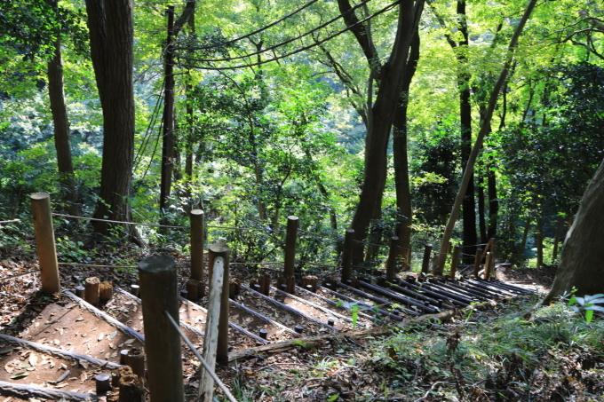 【神奈川県立 七沢森林公園】_f0348831_00063179.jpg