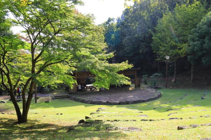 【神奈川県立 七沢森林公園】_f0348831_00063502.jpg