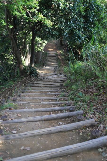 【神奈川県立 七沢森林公園】_f0348831_00065423.jpg