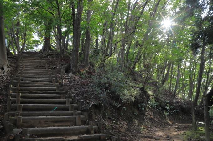 【神奈川県立 七沢森林公園】_f0348831_00065506.jpg