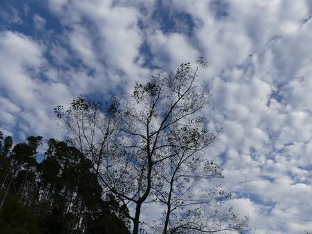 秋の風情_a0123836_17145358.jpg