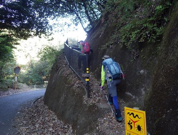 南九州への山&花旅・・・高房山、ヤッコソウ_e0164643_15053774.jpg