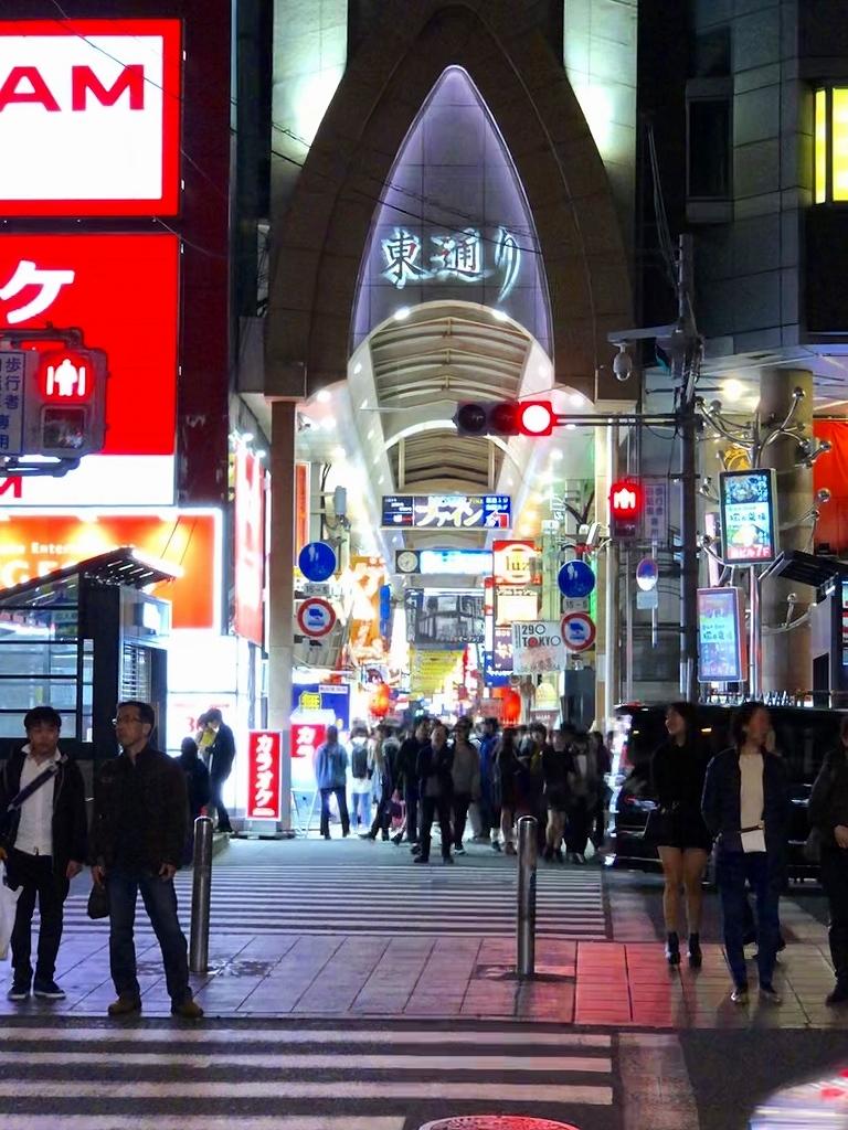 東海道新幹線 新横浜ー新大阪_a0384046_23082232.jpg