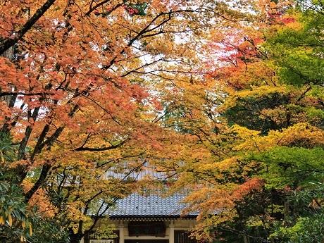 高野山~霊宝館_c0057946_19541469.jpg