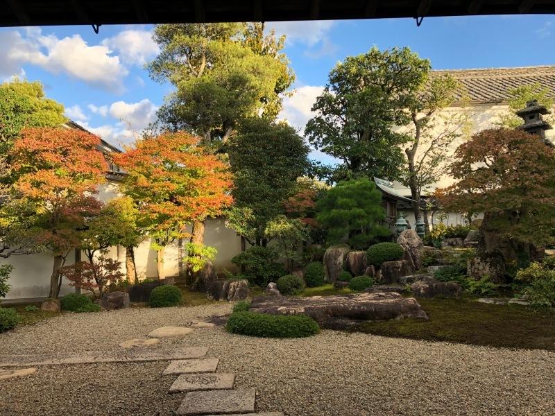 書院庭園のライトアップ_f0101949_16152108.jpg