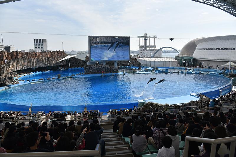 名古屋港水族館_e0164563_14083748.jpg