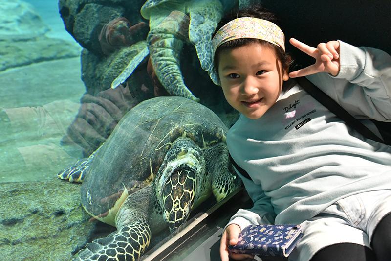 名古屋港水族館_e0164563_14090599.jpg