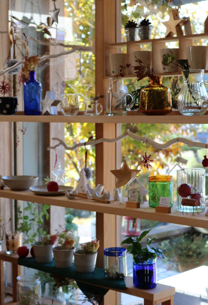 『赤い実を採りに』&『クリスマス準備ほぼ整いました』_c0334574_16464612.jpg