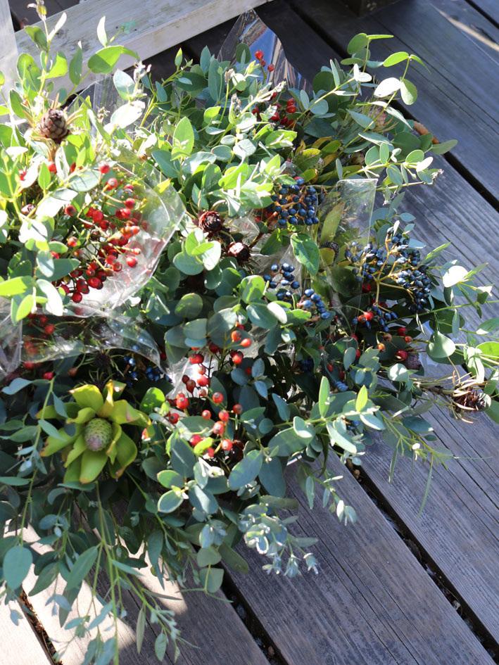 『赤い実を採りに』&『クリスマス準備ほぼ整いました』_c0334574_16465502.jpg