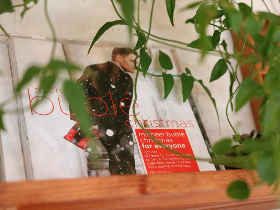 『赤い実を採りに』&『クリスマス準備ほぼ整いました』_c0334574_16470709.jpg
