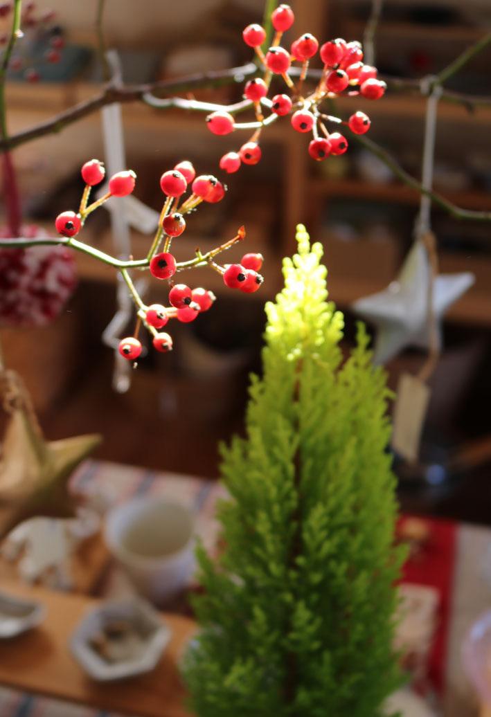 『赤い実を採りに』&『クリスマス準備ほぼ整いました』_c0334574_16493930.jpg