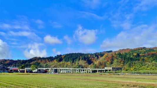 配送日の秋風景から_c0336902_19280552.jpg
