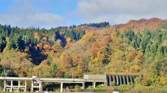 配送日の秋風景から_c0336902_19283947.jpg