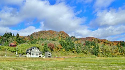 配送日の秋風景から_c0336902_19285358.jpg