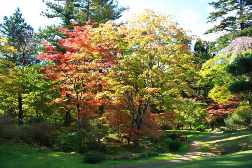 日光 田母沢御用邸記念公園の庭園1_a0263109_15383807.jpg