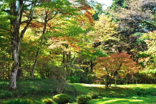 日光 田母沢御用邸記念公園の庭園1_a0263109_15383850.jpg