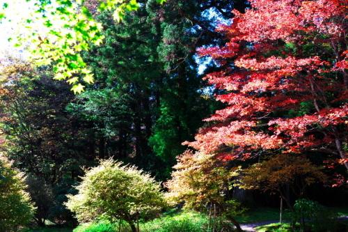 日光 田母沢御用邸記念公園の庭園1_a0263109_15384007.jpg