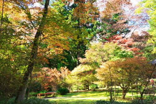 日光 田母沢御用邸記念公園の庭園1_a0263109_15391043.jpg