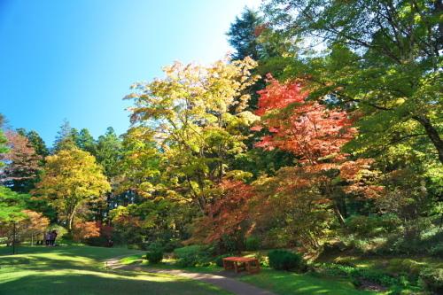 日光 田母沢御用邸記念公園の庭園1_a0263109_15391064.jpg