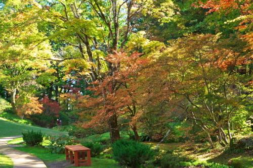 日光 田母沢御用邸記念公園の庭園1_a0263109_15391074.jpg