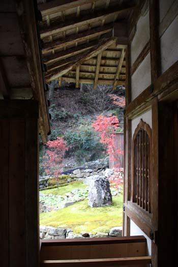 紅葉が始まった 阿弥陀寺_e0048413_19133067.jpg