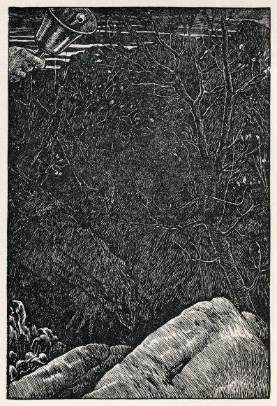 いきなり真冬に(+ ルイス・キャロルの「スナーク狩り」)_c0025115_22005194.jpg