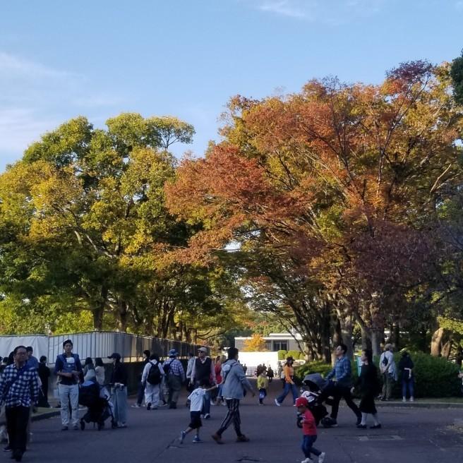 ~大阪万博記念公園~_f0191715_16152334.jpg