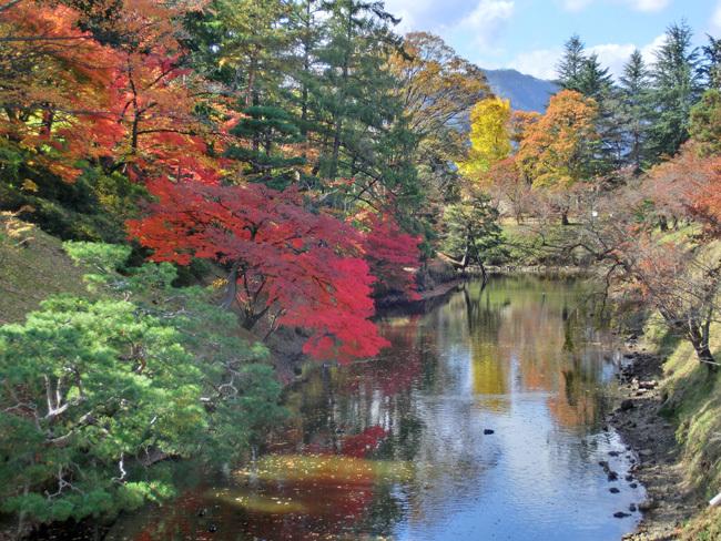 上田城跡公園の紅葉_d0066822_16174000.jpg