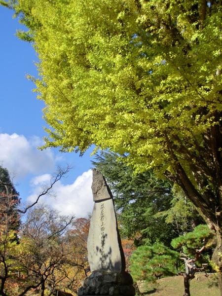 上田城跡公園の紅葉_d0066822_16183413.jpg