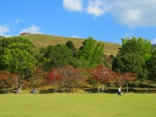 奈良を楽しむ・・3_e0030924_13540584.jpg