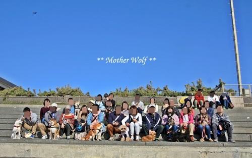 マザーウルフ遠足、江の島へ行って来ました~♪_e0191026_19405225.jpg