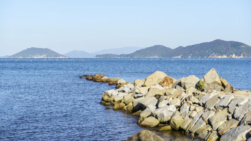 海岸散歩 2019 香西西地区 港&緑地_d0246136_18163782.jpg