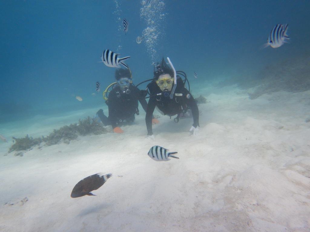 最高にキレイな海で体験ダイビング☆_a0189838_13522271.jpg