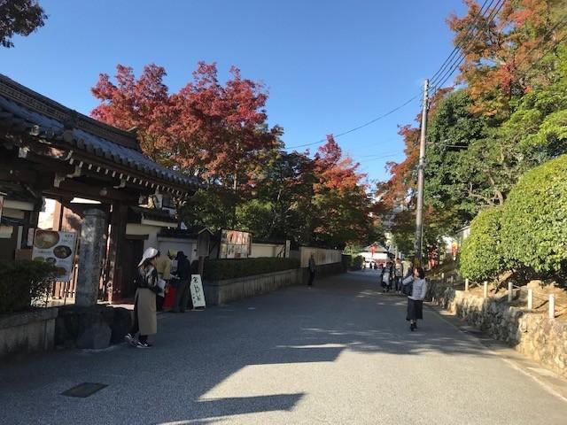 京都の紅葉情報_d0020139_23155716.jpeg