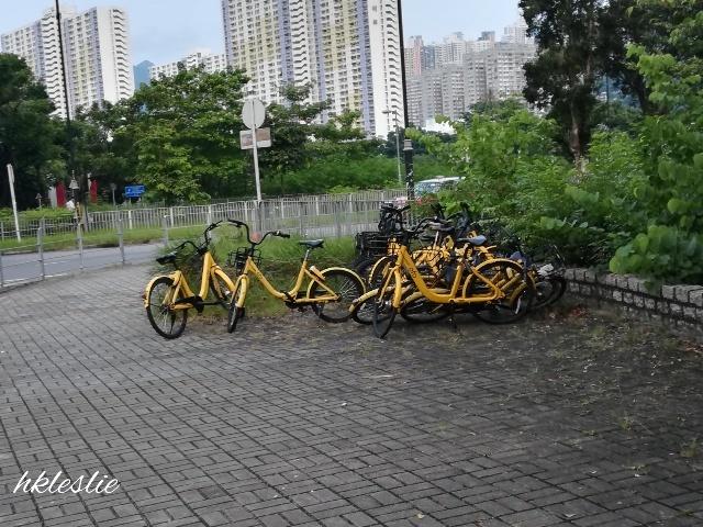 香港文化博物館→深水埗_b0248150_10073295.jpg