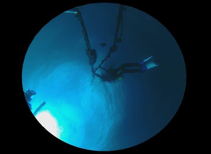 1115    第28回、人工魚礁研究会_b0075059_23160864.jpg