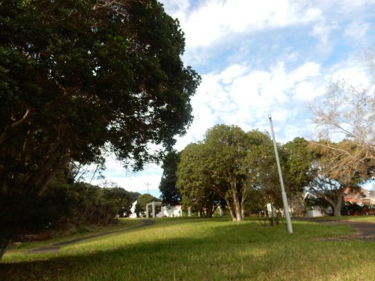 '19,11,15(金)キョンと公園散歩と小雪ちゃん!_f0060461_10145965.jpg