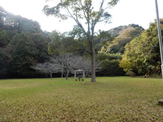 '19,11,15(金)キョンと公園散歩と小雪ちゃん!_f0060461_10200468.jpg