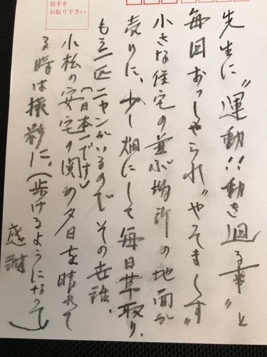 患者さんから綺麗な写真をいただきました(小松の海)_b0052170_12505990.jpg