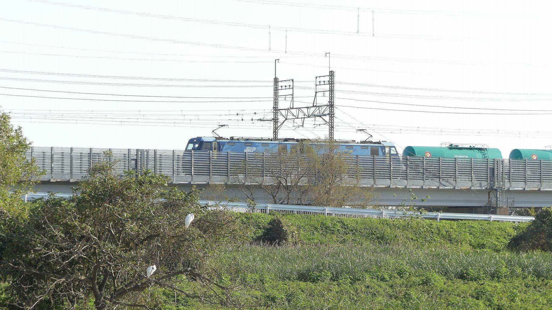 秋ヶ瀬公園ふたりぼっち その3_a0185081_10512901.jpg
