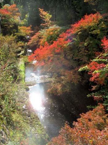 紅葉が始まった 千束の吟松寺_e0048413_20302339.jpg