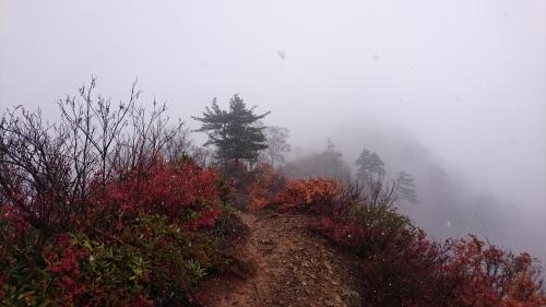 2019.11.8/9 中ノ岳登山! 1日目_a0236914_08113371.jpg