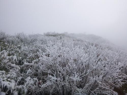 2019.11.8/9 中ノ岳登山! 1日目_a0236914_08115366.jpg