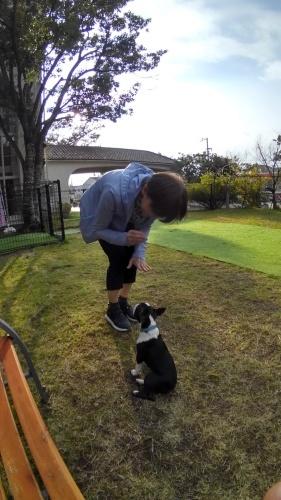 タキちゃんドッグランデビュー \(^-^)/_e0099019_03052467.jpg