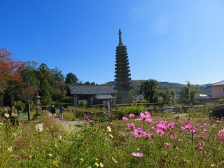 奈良を楽しむ・・4_e0030924_14263524.jpg