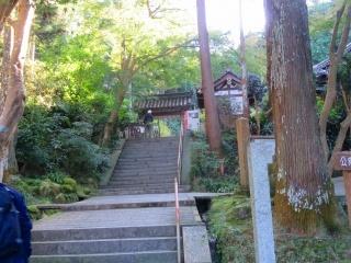 奈良を楽しむ・・4_e0030924_14410679.jpg