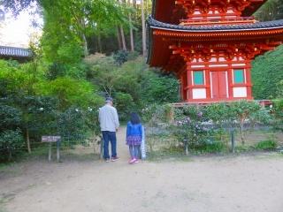 奈良を楽しむ・・4_e0030924_15015528.jpg
