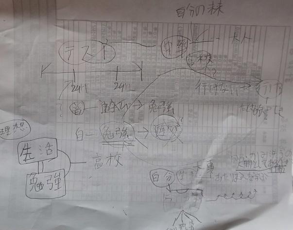 自主的にテスト勉強をして、自らマインドマップを書いた_a0184225_17073867.jpg