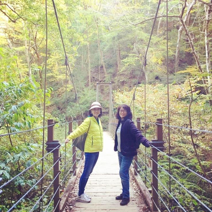 森林浴〜高尾山の紅葉はまだまだこれから_a0018237_11424028.jpeg