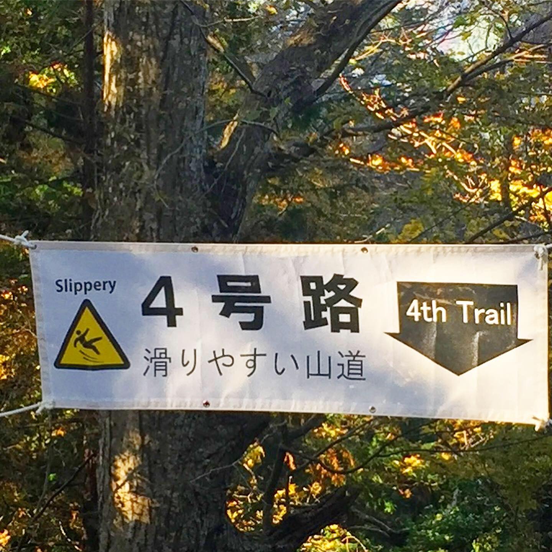 森林浴〜高尾山の紅葉はまだまだこれから_a0018237_11441919.jpeg